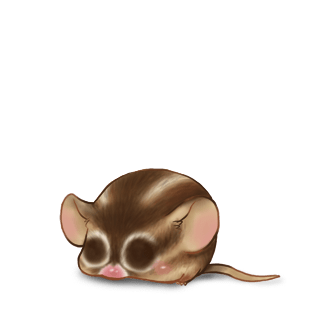 Adopt a Squirrel Mouse