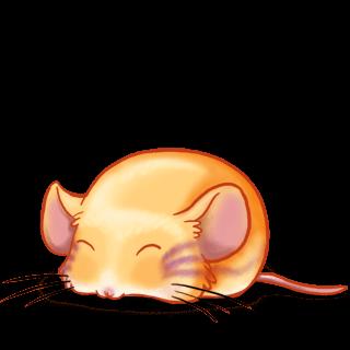 Adopt a Strange Mouse Mouse
