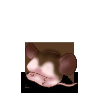 Adopt a Bat Mouse