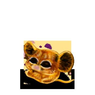 Adopt a Lion Mouse