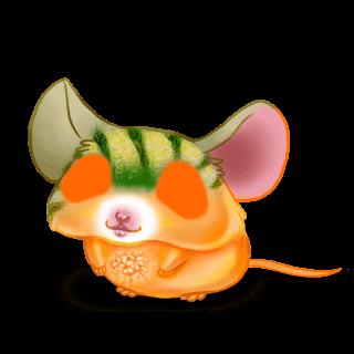 Adopt a Melon Mouse