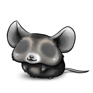Adopt a Black and white Mouse