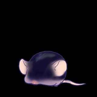 Adopt a Rock Mouse