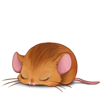 Adopt a Red ram Mouse