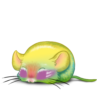 Adopt a Sunlight Mouse