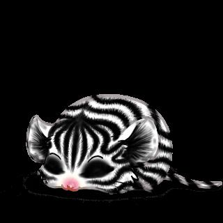 Adopt a Zebra Mouse