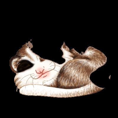 Adopt a Husky Brown Ferret