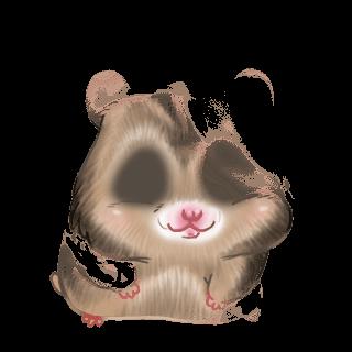 Adopt a Rainbow Hamster