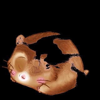 Adopt a Caramel Hamster