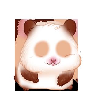 Adopt a Golden glitter Hamster