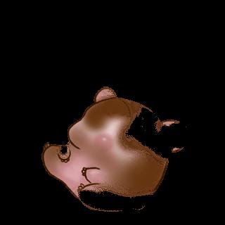 Adopt a Flunsh Hamster