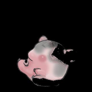 Adopt a Chestnut Hamster