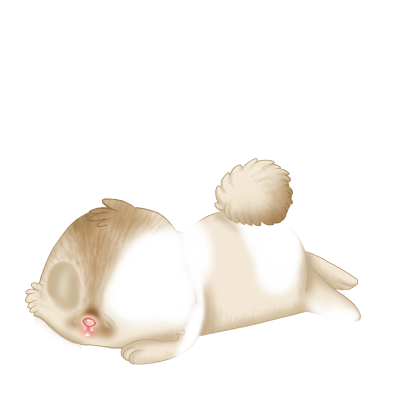 Adopt a Simba Rabbit