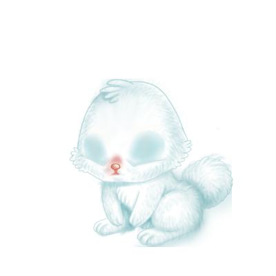 Adopt a Siamese Rabbit