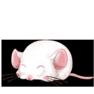 Chocolat au lait Mouse