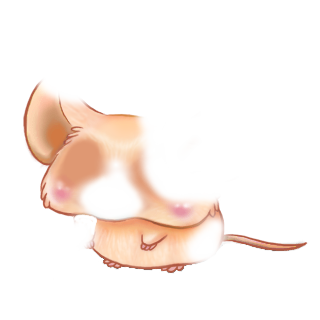 Adopt a Pinkpurple Mouse