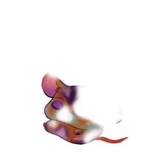 Blanche Mouse