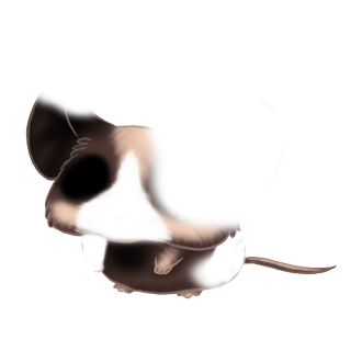 Adopt a Horror Mouse
