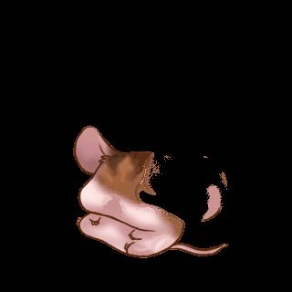 Adopt a Pink plush Mouse