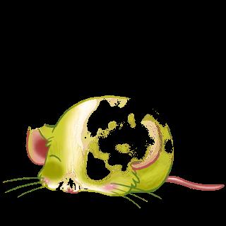 Adopt a Flunsh Mouse