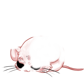 Adopt a Sequins Mouse