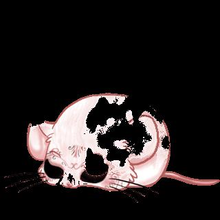 Adopt a Panda Mouse