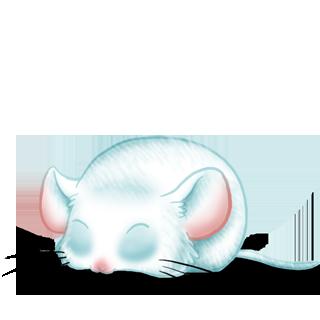 Adopt a Venice Mouse