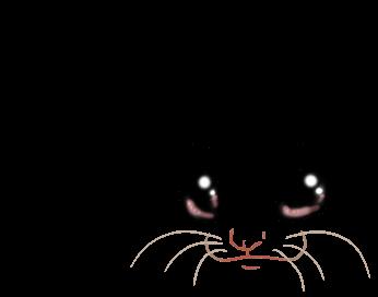 Cromimi Ferret